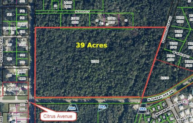 3607 N Citrus Avenue, Crystal River, FL 34428 (MLS #762171) :: Plantation Realty Inc.