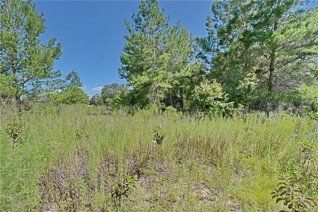 3572 E Kerry Lane, Inverness, FL 34452 (MLS #762602) :: Plantation Realty Inc.