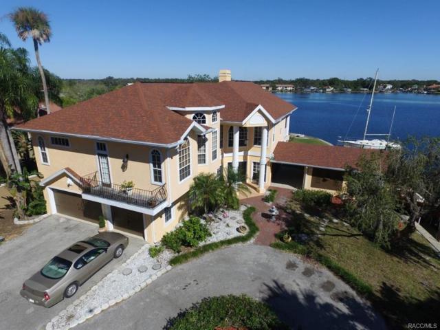 2111 N Watersedge Drive, Crystal River, FL 34429 (MLS #763040) :: Plantation Realty Inc.