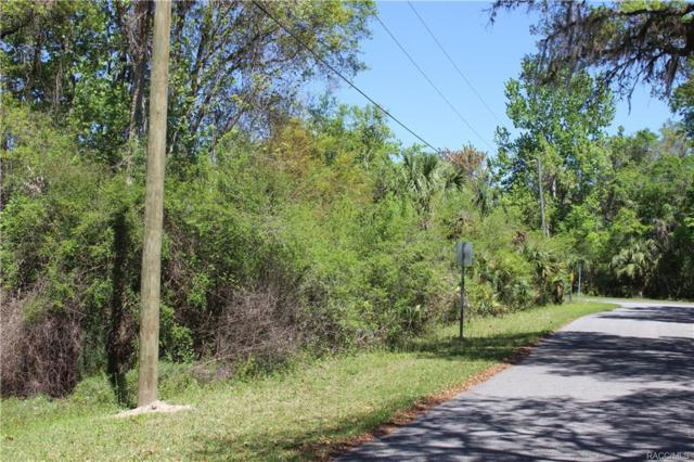 5408 S Red Wing Avenue, Lecanto, FL 34461 (MLS #763106) :: Plantation Realty Inc.