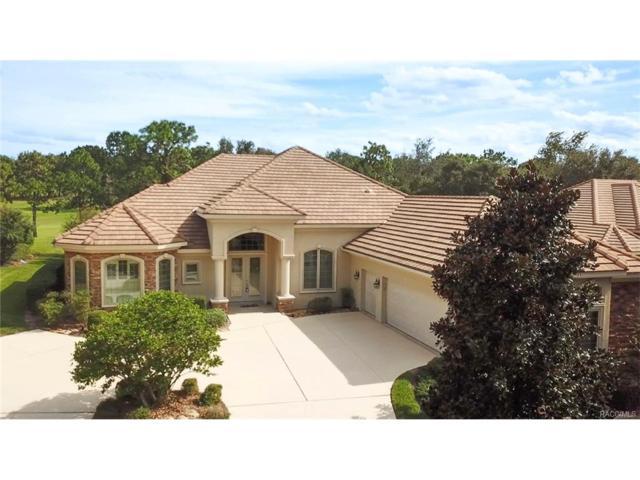 2771 N Crosswater Path, Lecanto, FL 34461 (MLS #764353) :: Plantation Realty Inc.