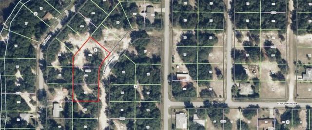 6446 N Bluebonnet Drive, Hernando, FL 34442 (MLS #764427) :: Plantation Realty Inc.