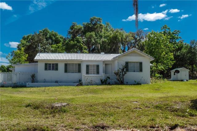 301 W Highland Boulevard, Inverness, FL 34452 (MLS #764594) :: Plantation Realty Inc.