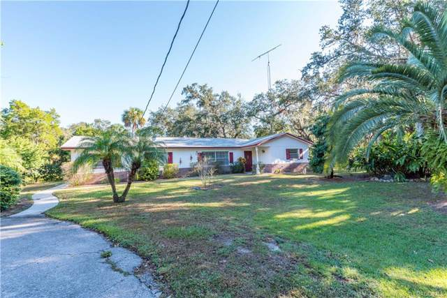 6629 S Bassett Drive, Homosassa, FL 34448 (MLS #764736) :: Plantation Realty Inc.