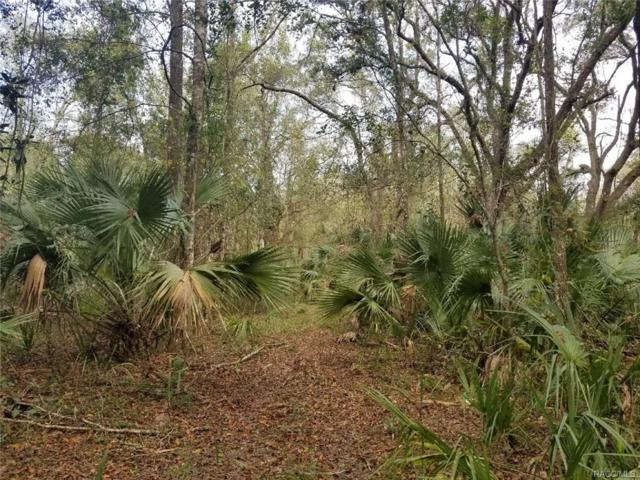 8220 S Kimberly Circle, Floral City, FL 34450 (MLS #765851) :: Plantation Realty Inc.