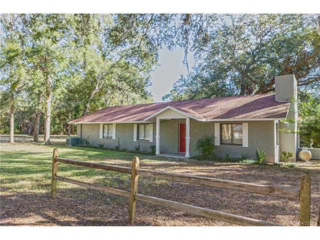 69 Allen Avenue, Inglis, FL 34449 (MLS #765917) :: Plantation Realty Inc.