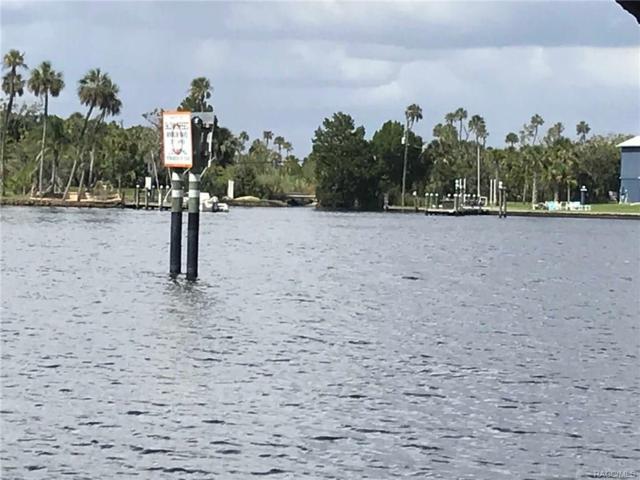 10915 W Xanadu Path, Homosassa, FL 34448 (MLS #765946) :: Plantation Realty Inc.