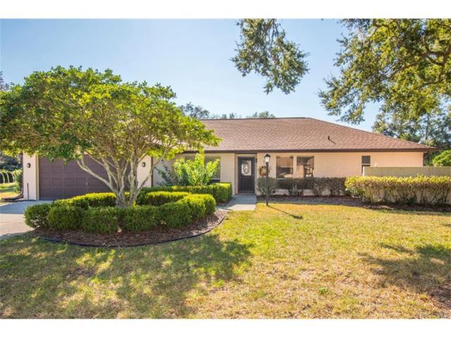 1280 N Selkirk Point, Crystal River, FL 34429 (MLS #766043) :: Plantation Realty Inc.