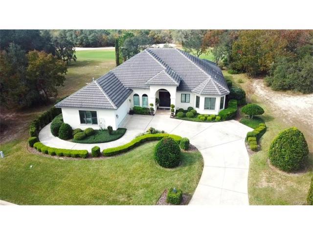 2684 N Prestwick Way, Lecanto, FL 34461 (MLS #766340) :: Plantation Realty Inc.