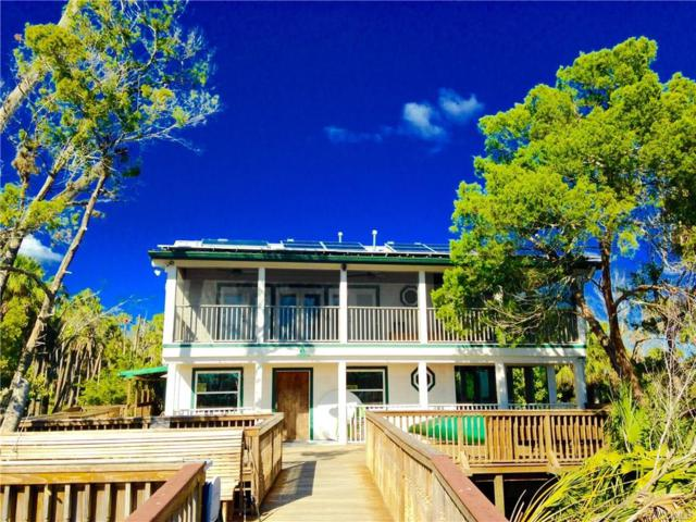 10361 Chassahowitzka River, Homosassa, FL 34446 (MLS #766537) :: Plantation Realty Inc.
