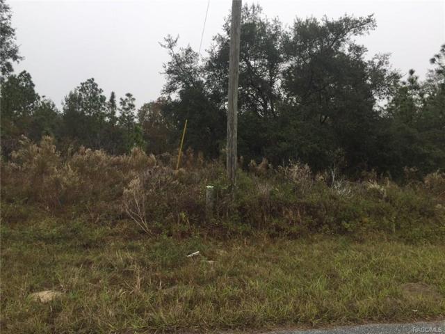 2145 W Riley Drive, Citrus Springs, FL 34434 (MLS #766581) :: Plantation Realty Inc.