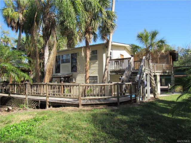 10592 W Fishbowl Drive, Homosassa, FL 34448 (MLS #766745) :: Plantation Realty Inc.
