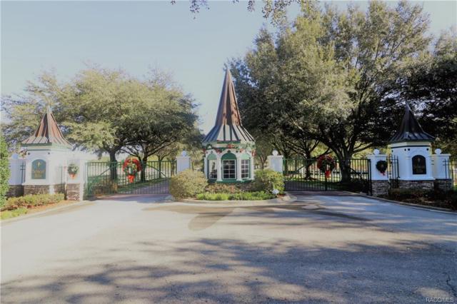 26 S Secretariat Point, Inverness, FL 34453 (MLS #766778) :: Plantation Realty Inc.
