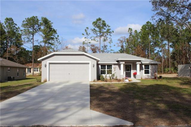 9365 E Mistwood Drive, Inverness, FL 34450 (MLS #767900) :: Plantation Realty Inc.