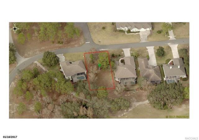 44 Deerwood Drive, Homosassa, FL 34446 (MLS #767962) :: Plantation Realty Inc.