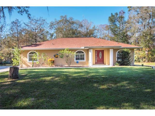 5494 S Bass Terrace, Floral City, FL 34436 (MLS #768004) :: Plantation Realty Inc.