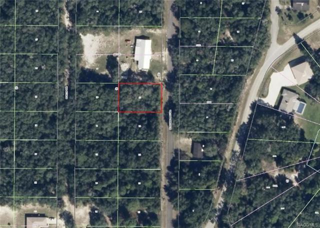 6558 N Pagoda Tree Terrace, Hernando, FL 34442 (MLS #768113) :: Plantation Realty Inc.