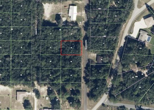 6544 N Pagoda Tree Terrace, Hernando, FL 34442 (MLS #768119) :: Plantation Realty Inc.