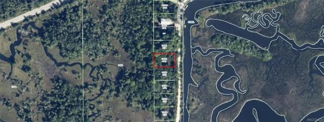 11957 W Waterwood Drive, Crystal River, FL 34429 (MLS #768195) :: Plantation Realty Inc.