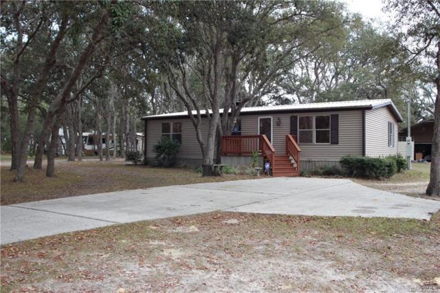 6115 S Esmeralda Terrace, Lecanto, FL 34461 (MLS #768785) :: Plantation Realty Inc.