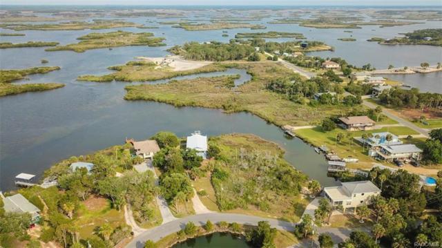 525 N Lake Circle, Crystal River, FL 34429 (MLS #768892) :: Plantation Realty Inc.