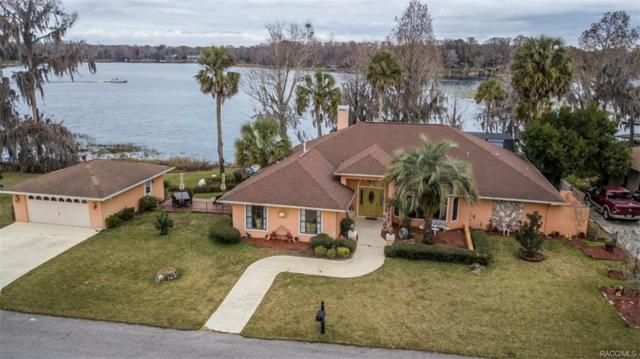 1430 S Waterview Drive, Inverness, FL 34450 (MLS #769000) :: Plantation Realty Inc.