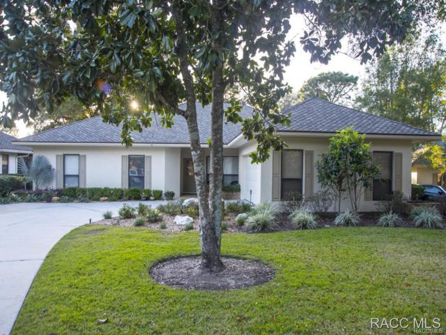 3398 N Bent Tree Point, Lecanto, FL 34461 (MLS #770174) :: Plantation Realty Inc.