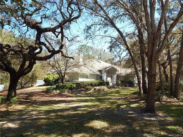 749 W Massachusetts Street, Hernando, FL 34442 (MLS #770387) :: Plantation Realty Inc.