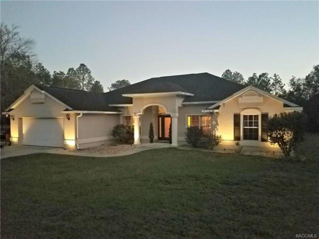 19970 SW 54th Street, Dunnellon, FL 34431 (MLS #770399) :: Plantation Realty Inc.