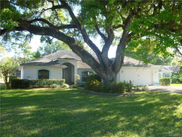2814 N Canterbury Lake Drive, Hernando, FL 34442 (MLS #771134) :: Plantation Realty Inc.
