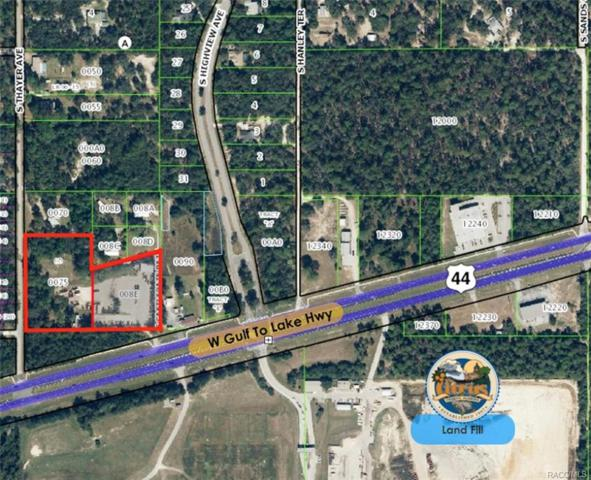 423 W Gulf To Lake Highway, Lecanto, FL 34461 (MLS #771204) :: Plantation Realty Inc.