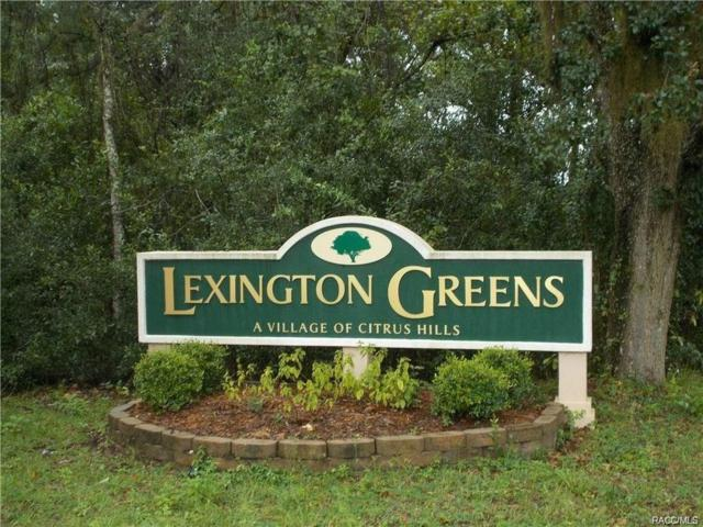 220 E Samuel Court, Hernando, FL 34442 (MLS #771339) :: Plantation Realty Inc.