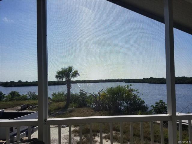 14241 W Sanddollar Lane, Crystal River, FL 34429 (MLS #771774) :: Plantation Realty Inc.
