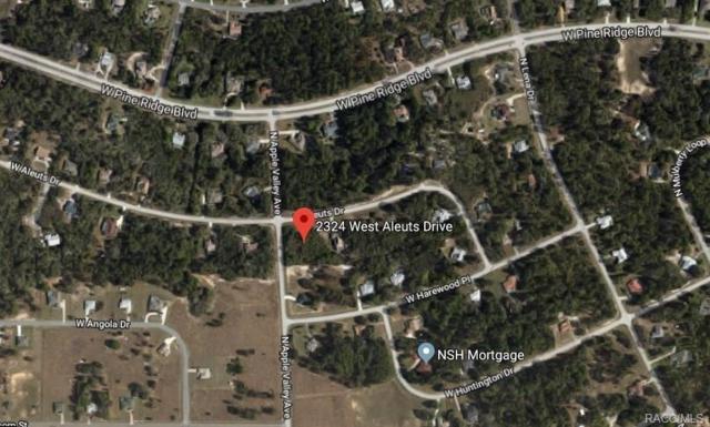 2324 W Aleuts Drive, Beverly Hills, FL 34465 (MLS #771889) :: Plantation Realty Inc.
