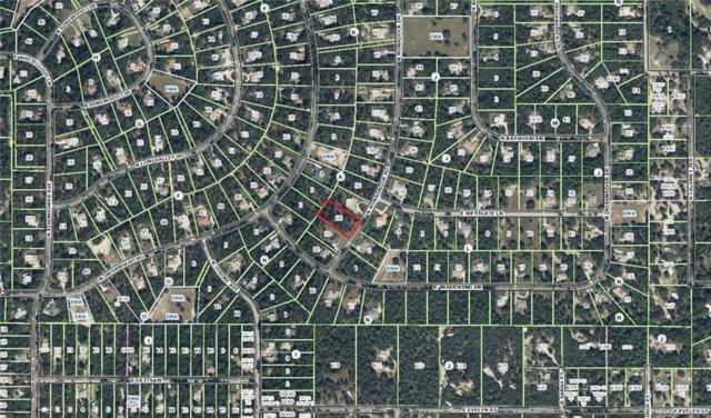 3848 N Monadnock Road, Hernando, FL 34442 (MLS #772239) :: Plantation Realty Inc.