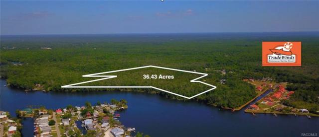 10007 W Yachtclub Path, Homosassa, FL 34448 (MLS #773498) :: Plantation Realty Inc.