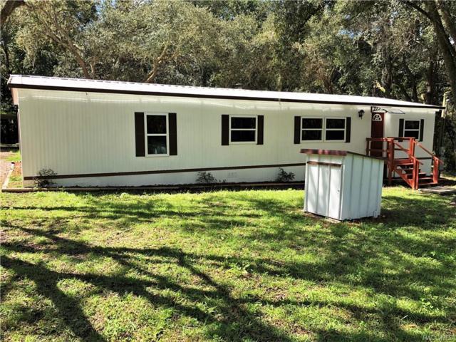2980 E Squirrel Court, Inverness, FL 34452 (MLS #773570) :: Plantation Realty Inc.