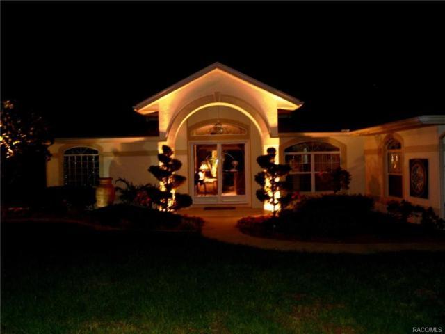 3691 E Lake Todd Drive, Hernando, FL 34442 (MLS #773611) :: Plantation Realty Inc.
