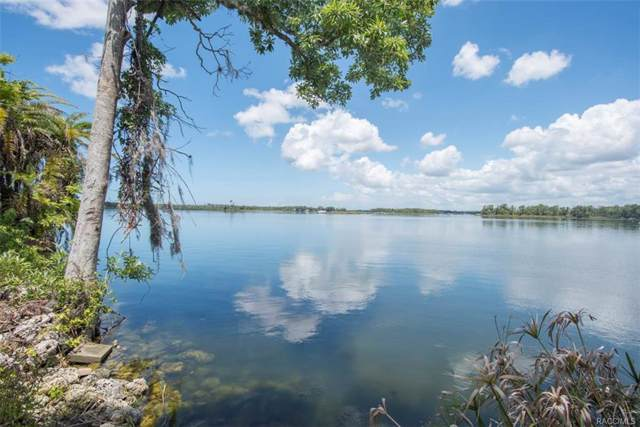 9699 W Wynn Court, Crystal River, FL 34429 (MLS #773791) :: Plantation Realty Inc.