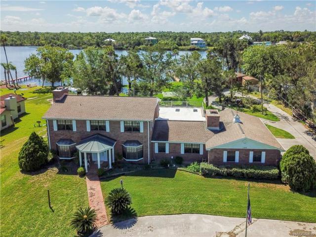 11082 W Halls River Road, Homosassa, FL 34448 (MLS #773912) :: Plantation Realty Inc.