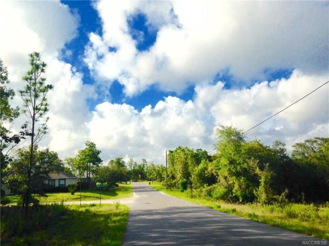 0 Little Gull Road, Weeki Wachee, FL 34614 (MLS #774189) :: Plantation Realty Inc.