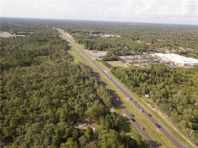 6982 S Suncoast Boulevard, Homosassa, FL 34446 (MLS #774587) :: Plantation Realty Inc.