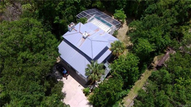 4565 S Le Woods Drive, Homosassa, FL 34448 (MLS #774607) :: Plantation Realty Inc.
