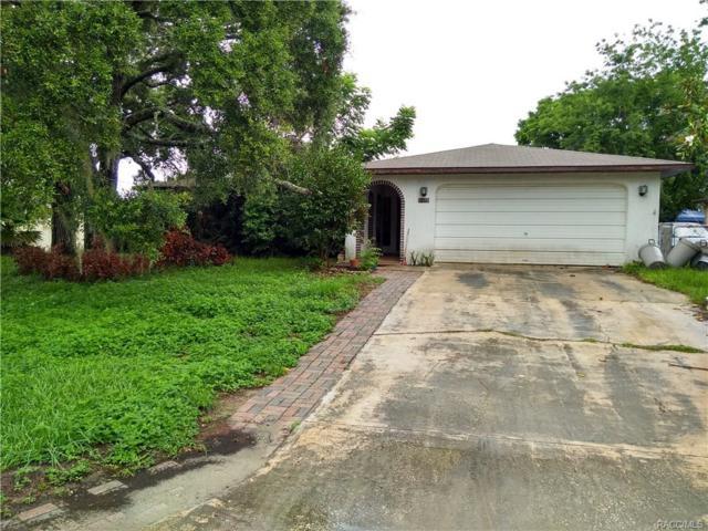 1377 Leeward Avenue, Spring Hill, FL 34606 (MLS #774862) :: Plantation Realty Inc.