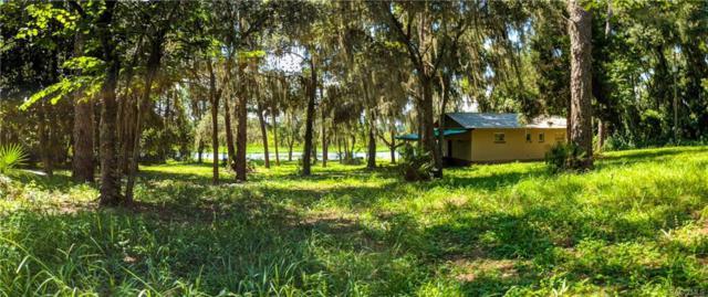 6391 W Riverbend Road, Dunnellon, FL 34433 (MLS #775007) :: Plantation Realty Inc.