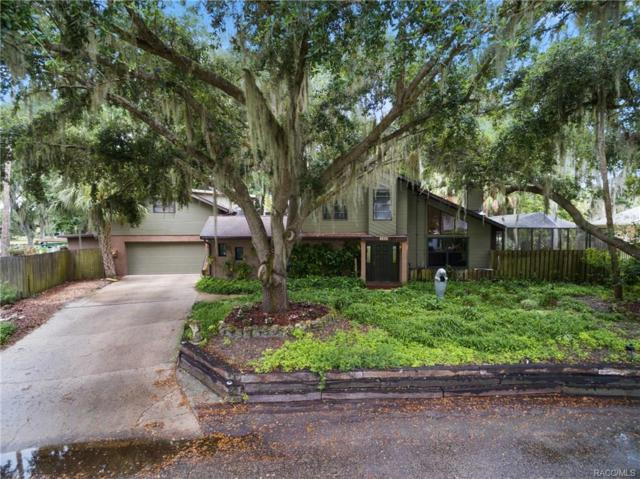 4215 S Purslane Drive, Homosassa, FL 34448 (MLS #775215) :: Plantation Realty Inc.