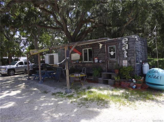 5380 S Boulevard Drive, Homosassa, FL 34448 (MLS #775325) :: Plantation Realty Inc.