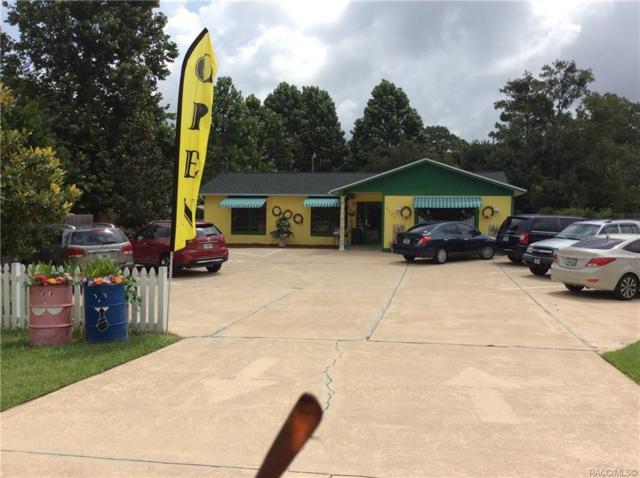 2423 S Rock Crusher Road, Homosassa, FL 34448 (MLS #775632) :: Plantation Realty Inc.