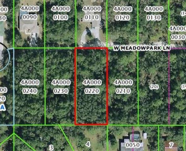 5704 W Meadowpark Lane, Crystal River, FL 34429 (MLS #775854) :: Plantation Realty Inc.