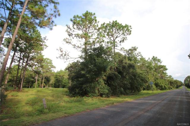 8863 S Evans Avenue, Inverness, FL 34452 (MLS #775923) :: Plantation Realty Inc.